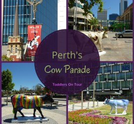 Share the Perth Cow Parade