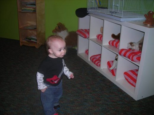 Children's Museum in Oak Lawn - vet - Toddling Around Chicagoland