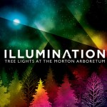 Illumination: Tree Lights at The Morton Arboretum – Giveaway