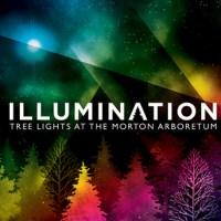 Illumination: Tree Lights at The Morton Arboretum – Giveaway