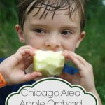Chicago Area Apple Orchard Guide 2014