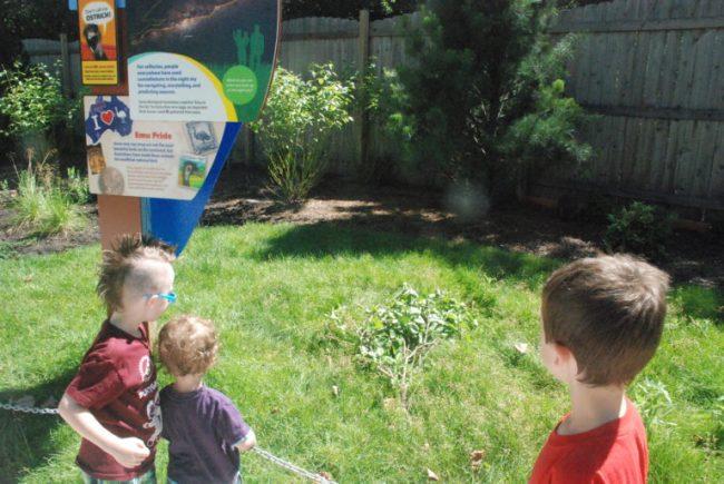 Wild Encounters at Brookfield Zoo - wallabies