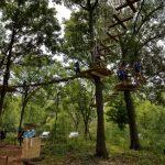 Go Ape Treetop Junior at Bemis Woods
