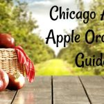 Chicago Area Apple Orchard Guide 2018