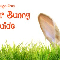 Easter bunny in the grass - Chicago area Easter Bunny guide