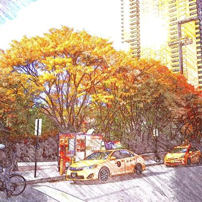 New York - so stylish, the autumnal leaves match the taxis. Yellow. Autumn. Leaves. Fall.