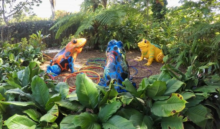 Selby Gardens Childrens Rainforest Garden Kid-Friendly Things to Do in Sarasota