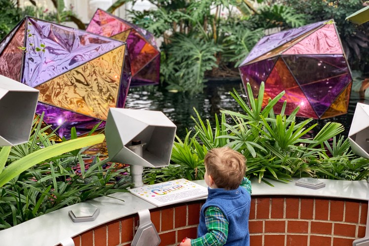 phipps conservatory pittsburgh spring show