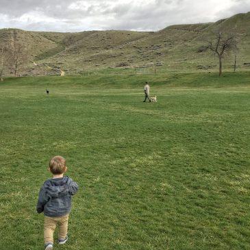 Camel's Back Park Boise with Kids Toddling Traveler