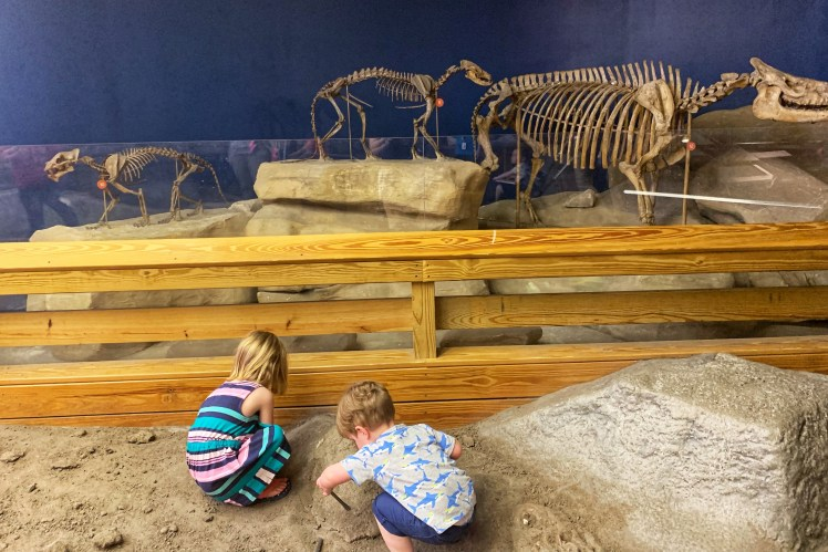 Fossil Digging Carnegie Museum of Natural History with a toddler
