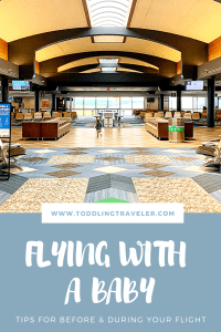 Tips for Flying with a Baby Pinterest Toddling Traveler
