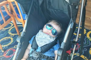 Bring a Stroller on a Cruise with a Baby or Young Toddler Toddling Traveler