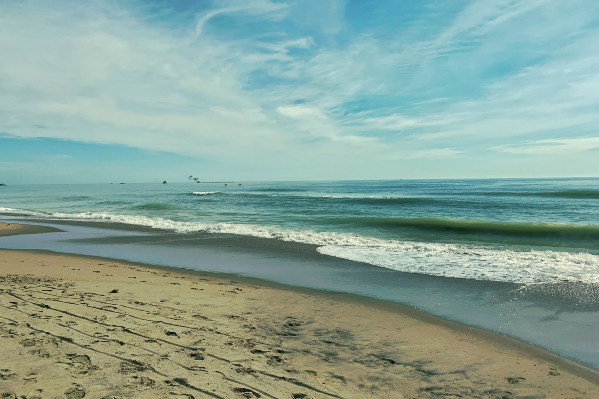 Dolphin Watching in Sandbridge, VA Beach Toddling Traveler