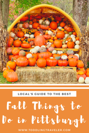Fall Things to do in Pittsburgh Toddling Traveler