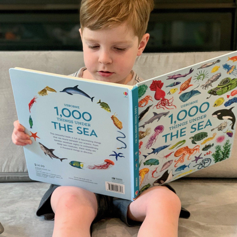 Ocean Books for Preschool Age Toddling Traveler