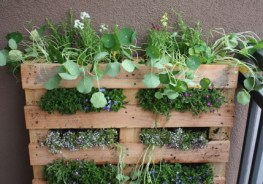 vertical container gardening