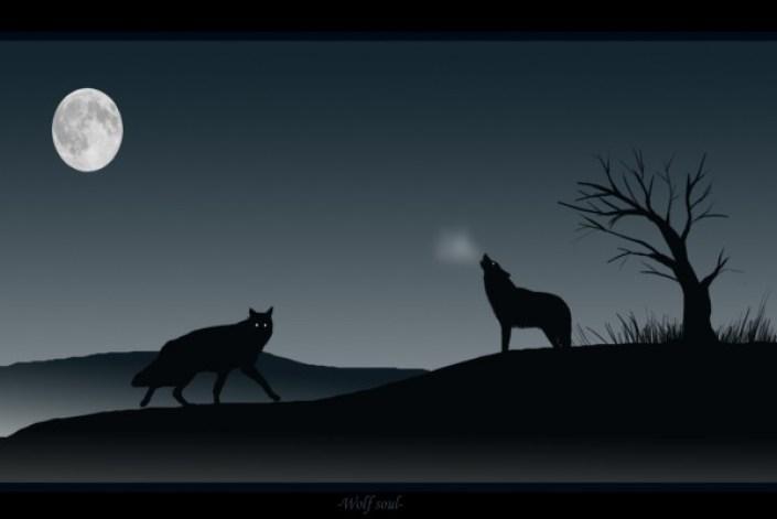 Resultado de imagen para lobos aullando