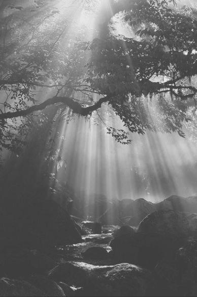 Imgenes Tumblr en Blanco y Negro Las Mejores Fotos