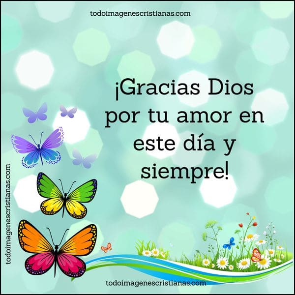 Imágenes Con Frases De Agradecimiento A Dios