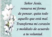 Señor Jesús, renuévame y moldea mi corazón de acuerdo a tu voluntad