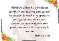 Cristo trae salvación a quienes lo esperan