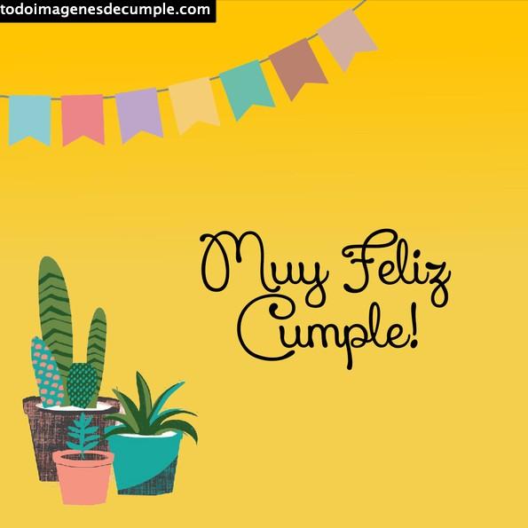 feliz cumple con cactus