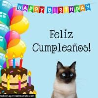 Imágenes de cumpleaños con gatitos