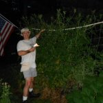 Make Trellis and you will smile too when your tomatoes are taller than you!