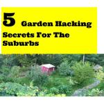 5 great garden hacks for the suburbs