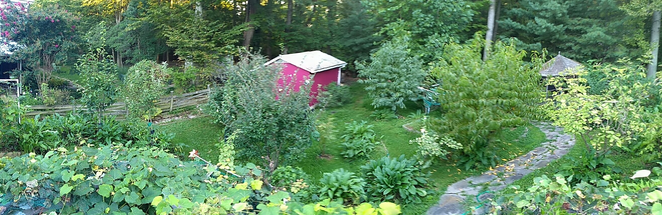 How To Create Permaculture Gardens In The Suburbs ... Permaculture Food Garden Design on modern garden design, veggie garden design, herb garden design, landscape design, companion planting garden design, high tunnel garden design, vegetable garden design, horticultural therapy garden design, water garden design, simple house garden design, forest garden design, bioretention garden design, swale garden design, bioshelter design, livestock garden design, xeriscape garden design, home garden design, keyhole garden design, cutting flowers garden design, sustainable garden design,