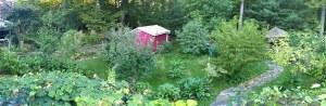 backyard food garden panorama