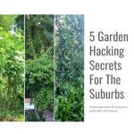 5 Garden Hacking secrets For the Suburbs - Slides
