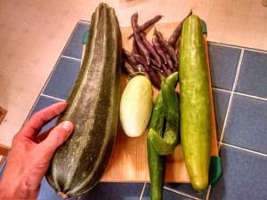 good food from good food garden design