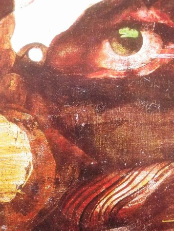 Landscape (with eye) / close up 1