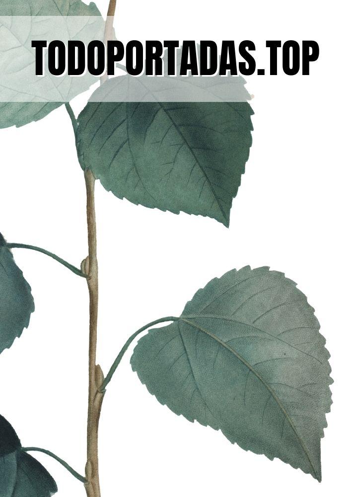Portada aesthetic hojas dentadas para Word