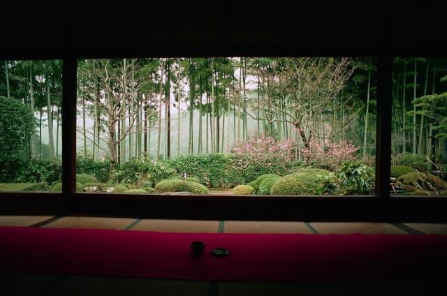 templo hosenin kioto
