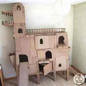Sam el hombre que le construye una casa con forma de dragon a su gato