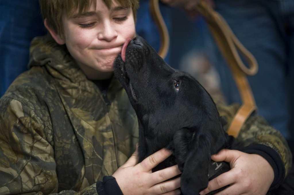 por qué los perros lamen a las personas