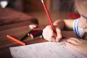 Ideas para temas de tesis de Gestión Educativa 2019