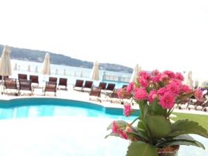 ホテルチュラーン・パレス・ケンピンスキー・イスタンブールプールから望むボスポラス海峡