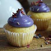 Vanille-Lavendel-Cupcakes