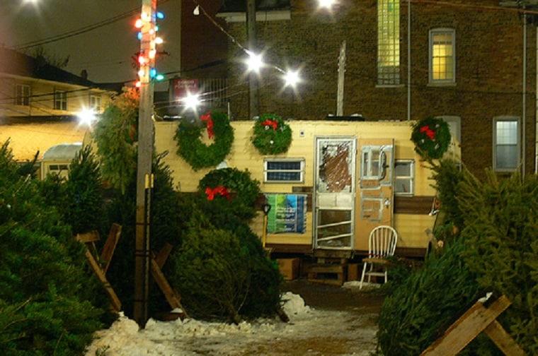 Christmas tradition - Christmas tree lot