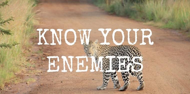 know your enemies - three enemies