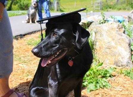 Ben Kersen congratulates Sharon as she graduates