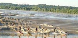 tidal-bore-wave