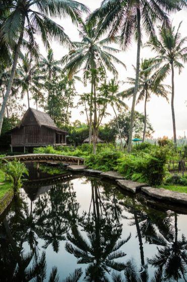 bambu_indah_landscape