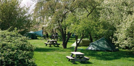 camping-home