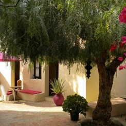 Groene-Patio-bij-dit-Bed-and-Breakfast-in-Portugal