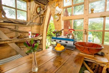 Treehotel-in-the-UK-Tree-Sparrow-House-009