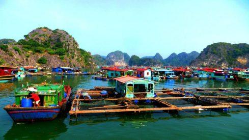 float-fishing-village21_kozw-ws